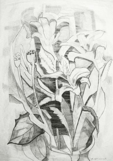Weinrich, Agnes - Still Life Tiger Lilies web